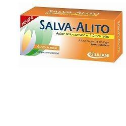 Salva Alito Arancia 30...